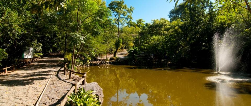 Parque Ecológico é um dos Pontos Turísticos em Florianópolis