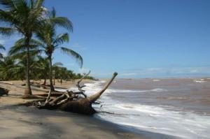 Praia do Mar Moreno