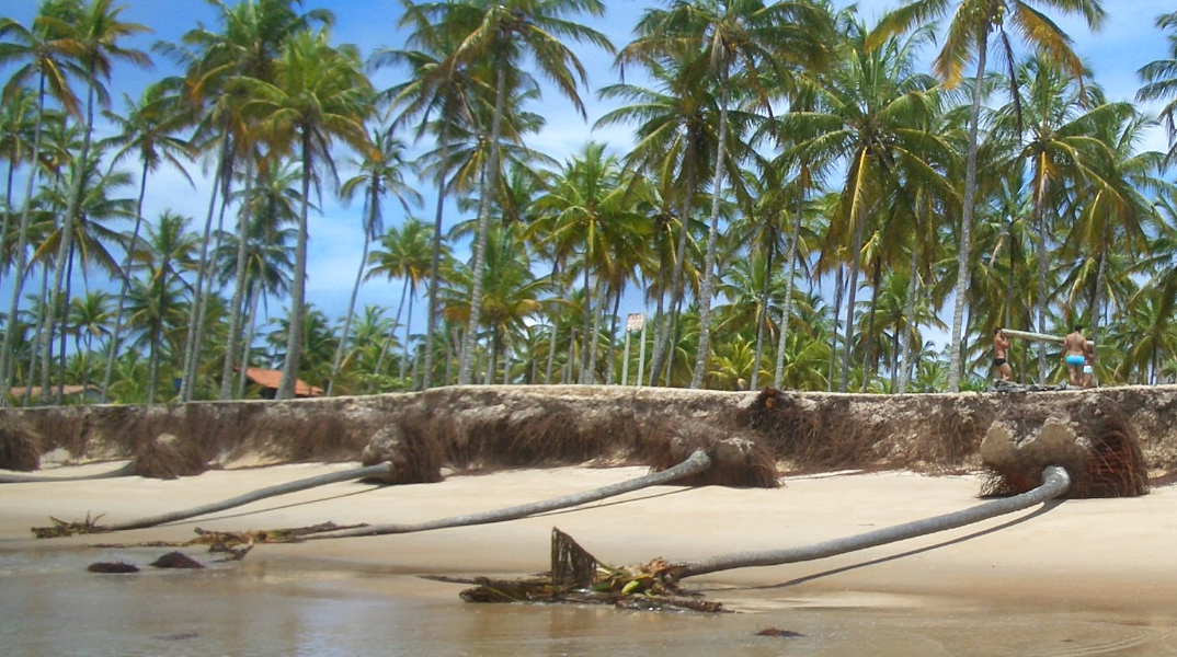 Fonte: www.loucosporpraia.com.br